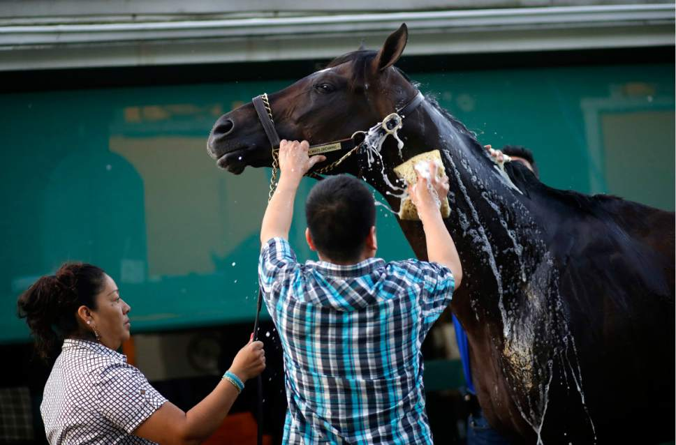 Horse racing: Always Dreaming, Classic Empire are neighbors in ...