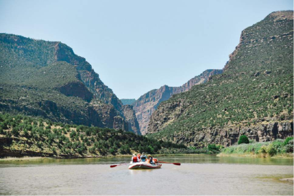 Rafting expedition companies are gearing up for a big season, with water running high on Utah's rivers and tributaries, including the Green River through Lodore Canyon. Courtesy Holiday River Expeditions