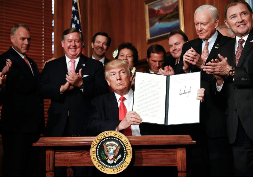 """Carolyn Kaster  