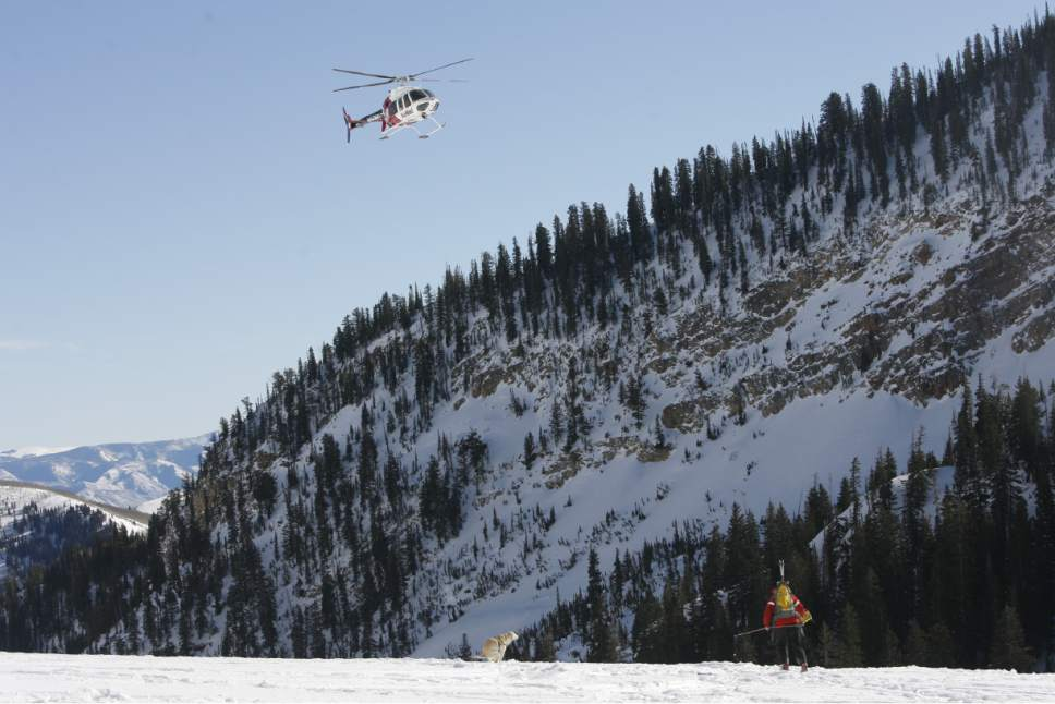 Rick Egan   |  The Salt Lake Tribune  An AirMed Helicopter flies along the peaks at Snowbird, as Wasatch Backcountry Rescue, University of Utah Health Care's AirMed and the Salt Lake County Sheriff's Office conducts a backcountry rescue training at Snowbird,Friday, January 8, 2010 Members of the Snowbird Ski Patrol, WBR and AirMed used long-range receivers (beacon locator equipment) in a simulated avalanche rescue, with the assistance of Snowbird avalanche rescue dogs.