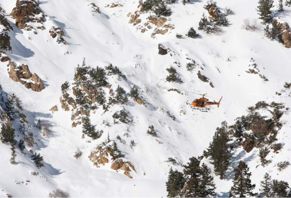 Leah Hogsten  |  The Salt Lake Tribune  Wasatch Powderbird helicopter brings back the body a one skier who died in an avalanche Saturday while skiing with his two friends. One person died in an avalanche in the backcountry between Big and Little Cottonwood canyons late Saturday, January 28, 2012. A group of three people were skiing on Kessler Ridge, an area that drops down into Mineral Fork Canyon in Big Cottonwood Canyon, when the avalanche was triggered at about 11:30 a.m. Wasatch Backcountry Rescue and several other crews searched the area with dogs and were able to eventually locate the victim. Hoyal said the skier was found dead at the scene at about 12:45 p.m.