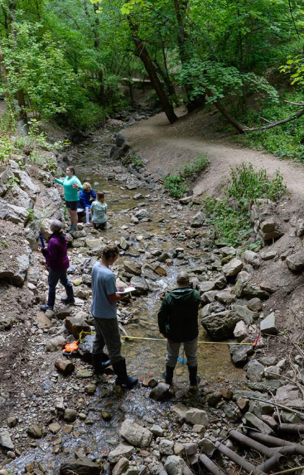 Francisco Kjolseth | The Salt Lake Tribune In an effort to understand the Red Butte Creek watershed like never before, researchers gather to study all aspects of the creek and its surrounding watershed in a collaborative, four-day venture. Seen here in Miller Park the study of 40 sites along the river began at 1100 East and will end at the source at the top of Red Butte Canyon.