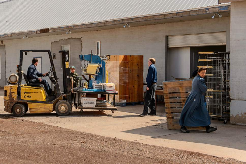 Trent Nelson  |  The Salt Lake Tribune FLDS members scramble to remove equipment from what had been the FLDS food storehouse in Colorado City, Ariz., as the UEP Trust takes over the property in an eviction.