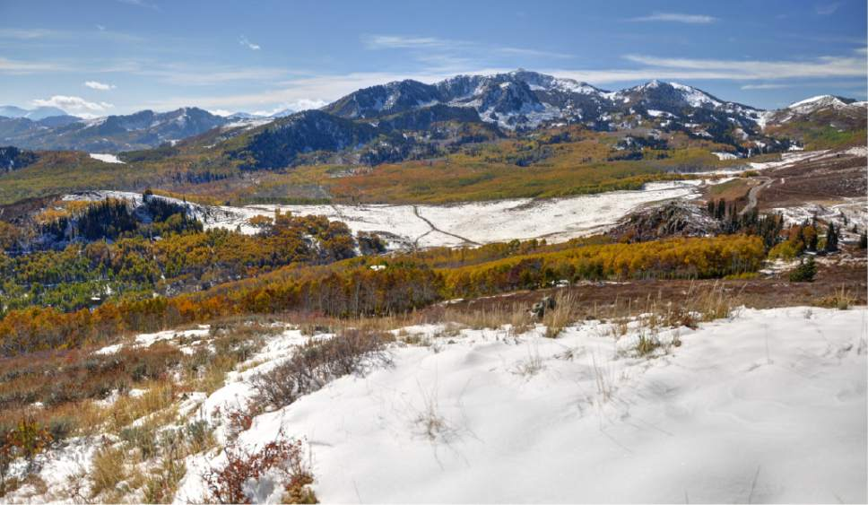 Courtesy of Save Our Canyons Bonanza Flats near the Wasatch Crest's Guardsman Pass would be preserved under a $38 million deal reached by Park City leaders with the 1,350-acre parcel's owner. This land was to become a 260-unit luxury destination, but the city, Summit County and nine non-profit groups have joined forces to acquire the land for public enjoyment and habitat conservation.