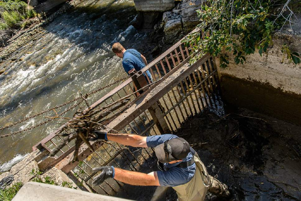 Trent Nelson  |  The Salt Lake Tribune Chris Hull and Nathan Tolman sift through debris in the Provo River as the search for a missing 4-year-old girl continued, Tuesday May 30, 2017.