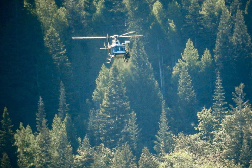 Trent Nelson  |  The Salt Lake Tribune Search and Rescue teams recover the body of a 22-year-old man who fell into the creek and falls in Bells Canyon, Tuesday June 6, 2017.