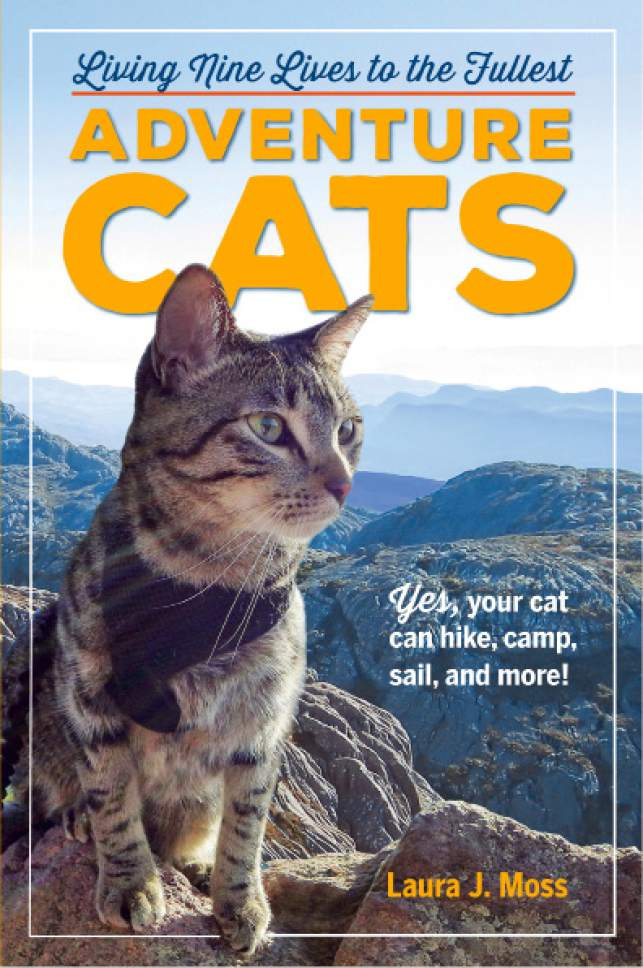 """This undated photo provided by Workman Publishing shows the cover of the book """"Adventure Cats,"""" which is full of tips and stories about outdoors enthusiasts who bring their felines along for paddleboarding, bicycling and hiking. The book's author, Laura J. Moss, suggests introducing a harness and a leash as quickly as possible once you bring your cat home and starting with small excursions. (Workman Publishing via AP)"""