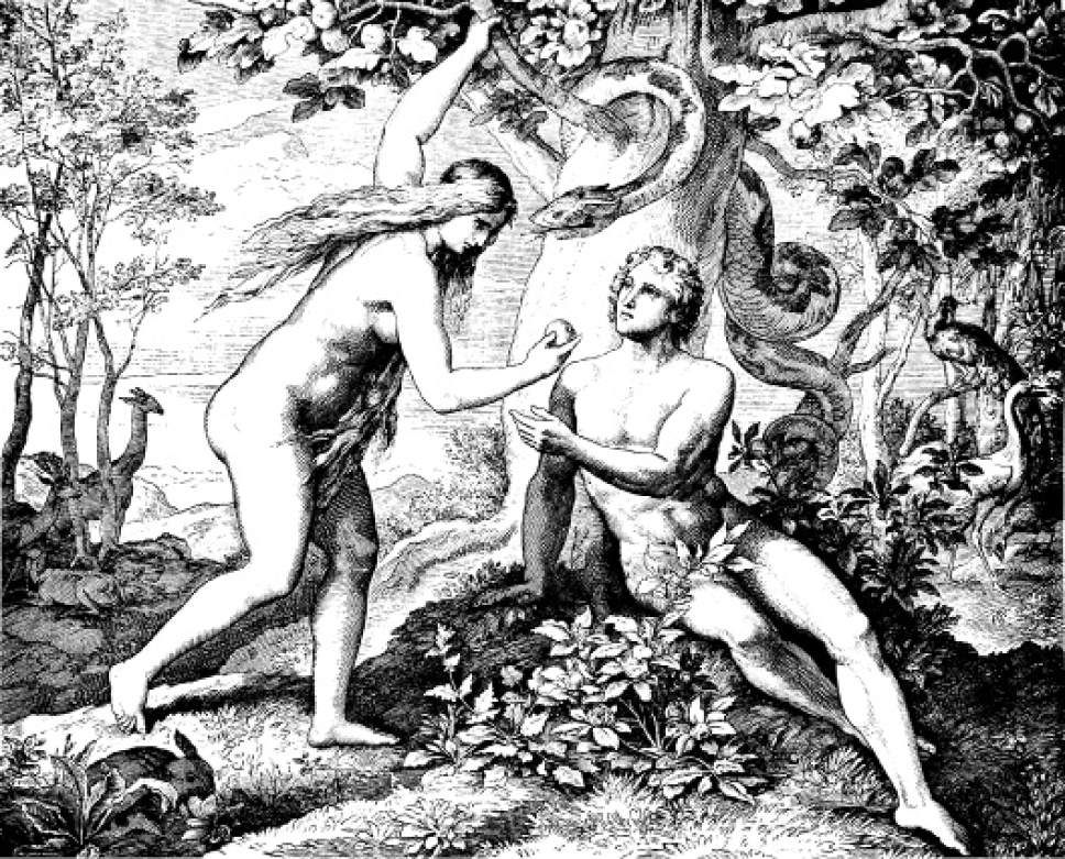 adam and eve essay 2 Essay on adam and eve who's powerless on decisions with compliance at all times women from the renaissance era must docile when speaking, and never speak out of anger or argue, nor must she be clever and witty.