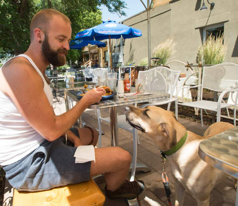 Rick Egan  |  The Salt Lake Tribune  Nate Zubal eats on the patio at the Pig and Jelly Jar with his dog, Carmel, on Friday, June 12, 2015.