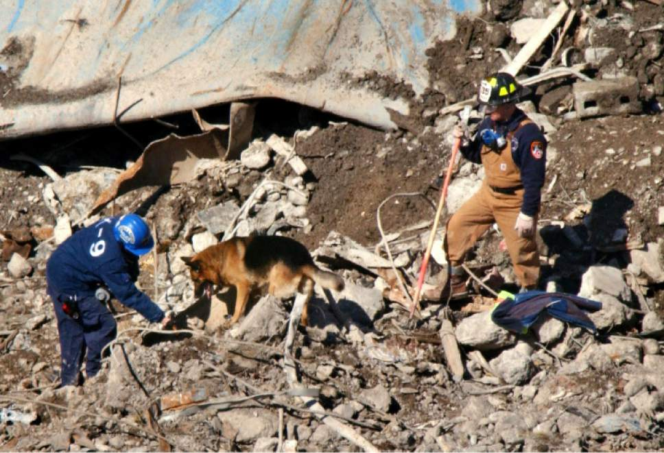 A K-9 officer instructs a dog to search for human remains as a firefighter stands by in the rubble of the collapsed One World Trade Center, Wednesday, April, 10, 2002, at ground zero in New York.  In the past two days workers have recovered the remains of at least four Trade Center victims. The recovery and clearing effort at the site is expected to end next month, but Ellen Borakove, a spokeswoman for the medical examiner's office, said the work of identifying remains would last another eight months. More than 18,000 body parts have been collected so far.(AP Photo/Kathy Willens)