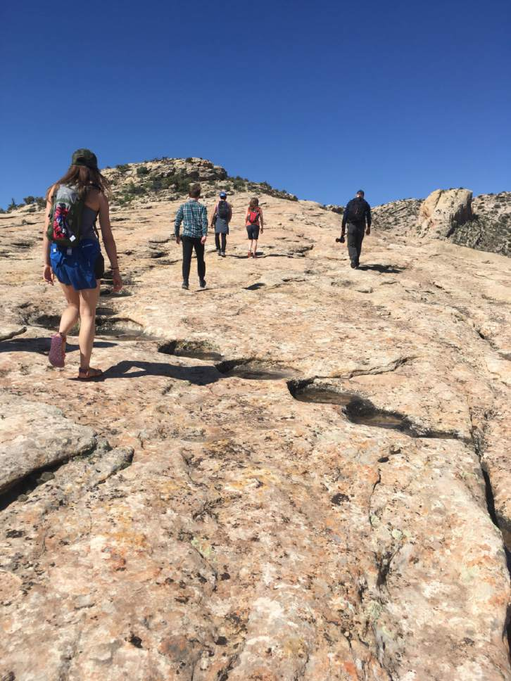 |  Courtesy of Lauren Curley  Dancers from Repertory Dance Theatre and ZviDance hike to the Procession Panel in Bears Ears National Monument.