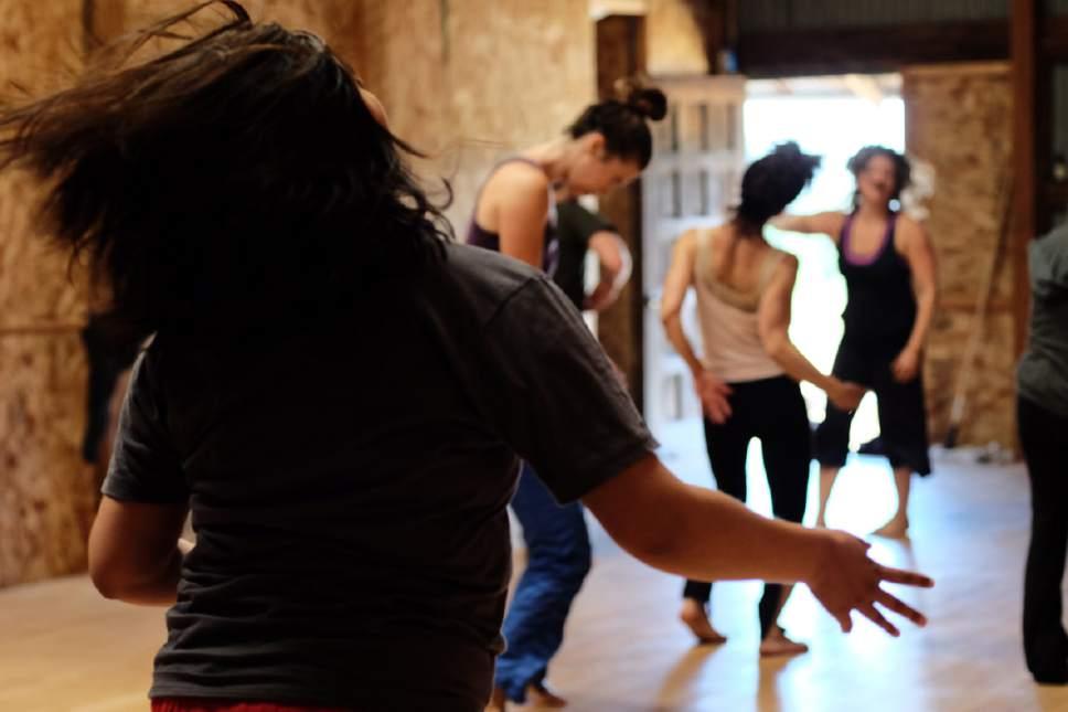   Courtesy of IndiGo  Dance on Land in Northern California.
