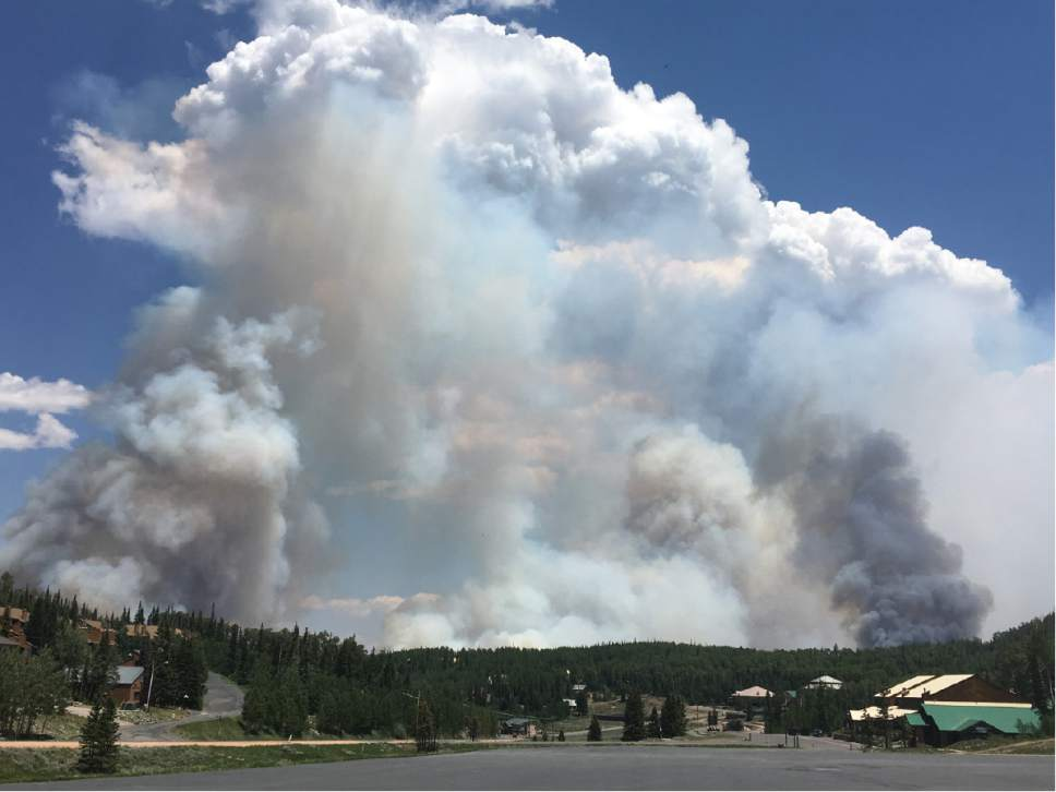 Tiffany Frandsen     The Salt Lake Tribune  By the evening of Wednesday, June 21, 2017, the Brian Head fire had burned 5,000 acres.