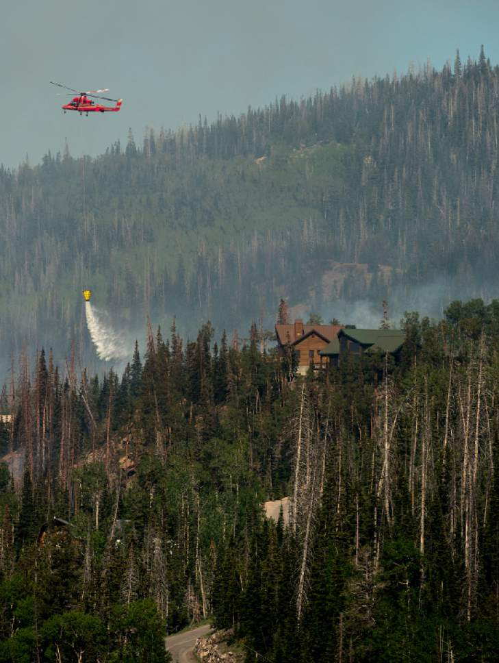 Leah Hogsten  |  The Salt Lake Tribune Firefighting crews and air tankers work to put out a wildfire that forced hundreds to evacuate from the southern Utah ski town of Brian Head on Sunday, June 18, 2017. Some of the graying spruce trees, killed by bark beetles, can be seen.
