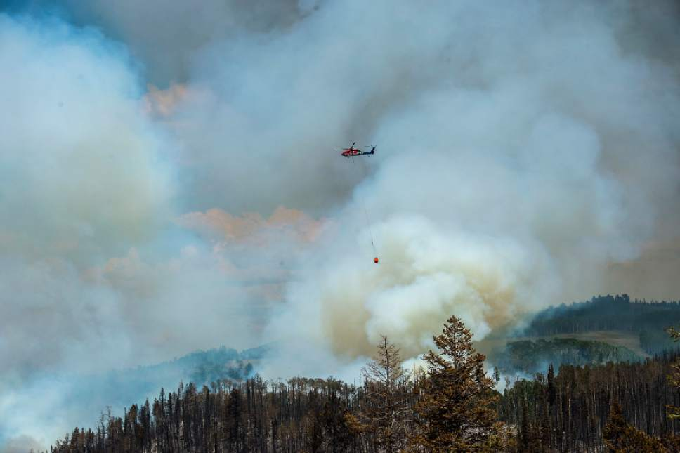 Chris Detrick  |  The Salt Lake Tribune Helicopter crews work to put out the wildfire burning north of the southern Utah ski town of Brian Head Tuesday, June 20, 2017. The Brian Head Fire -- which forced the evacuation of about 750 residents and visitors on Saturday -- was started by someone using a weed torch in dry conditions, Gov. Gary Herbert tweeted Tuesday, ahead of a 1 p.m. news conference.