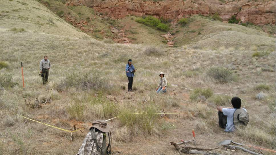 Ka-Voka Jackson instructs her research team at Glen Canyon National Recreation Area, where they are trying to rehabilitate canyons infested with ravenna grass. Courtesy Ka-Voka Jackson