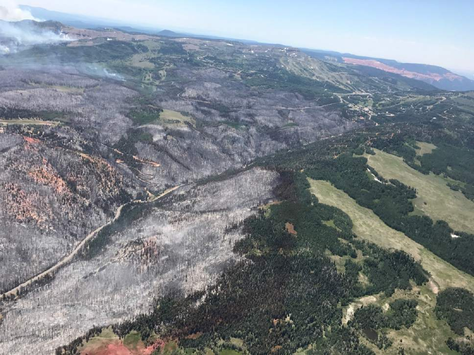 Justin Harding  |  Governor Herbert's Office  Aerial photos of the Brian Head fire during Governor Herbert's tour of the area on Monday June 26, 2017.