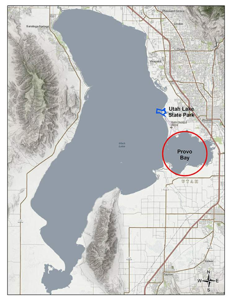    Courtesy Utah Department of Environmental Quality   A satellite map of Provo Bay and Utah Lake on Thursday, June 29, 2017.