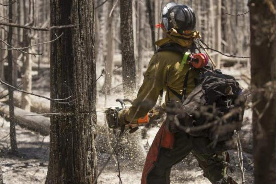 {hoto courtesy of the Interagency Fire Center  Crews continued the slow, painstaking task of clearing away potential fuels for the Brian Head Fire, which had neared 67,000 acres on Monday.