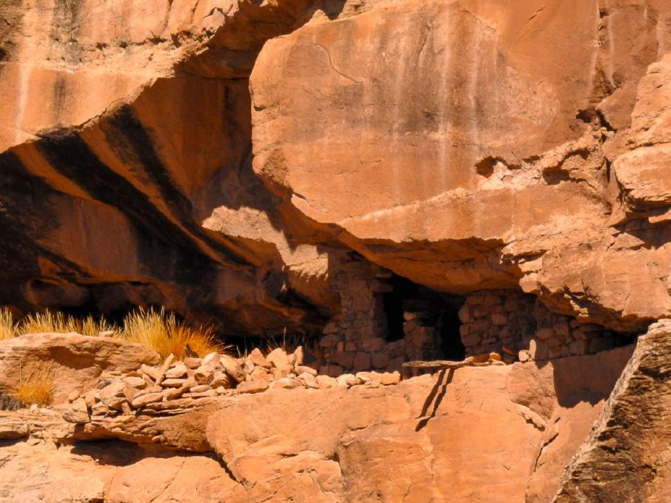 Trent Nelson     The Salt Lake Tribune A cliff dwelling in Recapture Canyon, Thursday September 8, 2016. The Bureau of Land Management is proposing to lease Racapture Canyon,  east of Blanding, for oil and gas development, along with other culturally important spots in Utah's San Juan County.