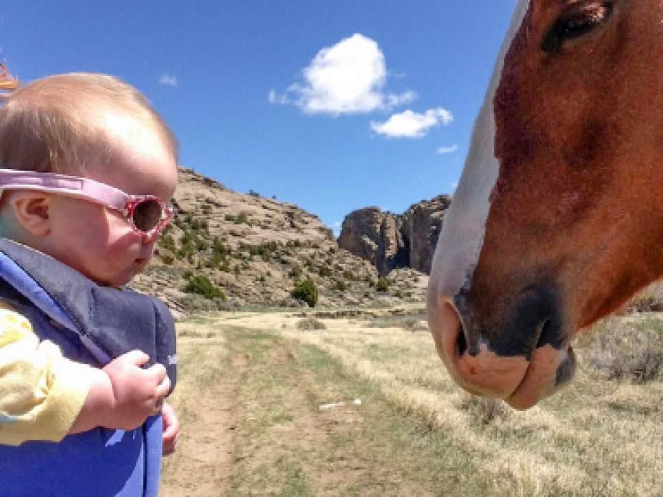 Erin Alberty  |  The Salt Lake Tribune  Scenes from the Oregon Trail: Devil's Gate, Natrona County, Wyo.
