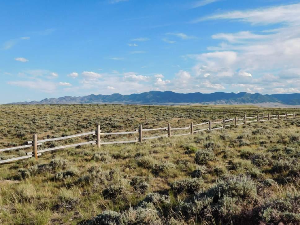 Craig Buschmann  |  Courtesy  Scenes from the Oregon Trail: Near Devil's Gate, Natrona County, Wyo.