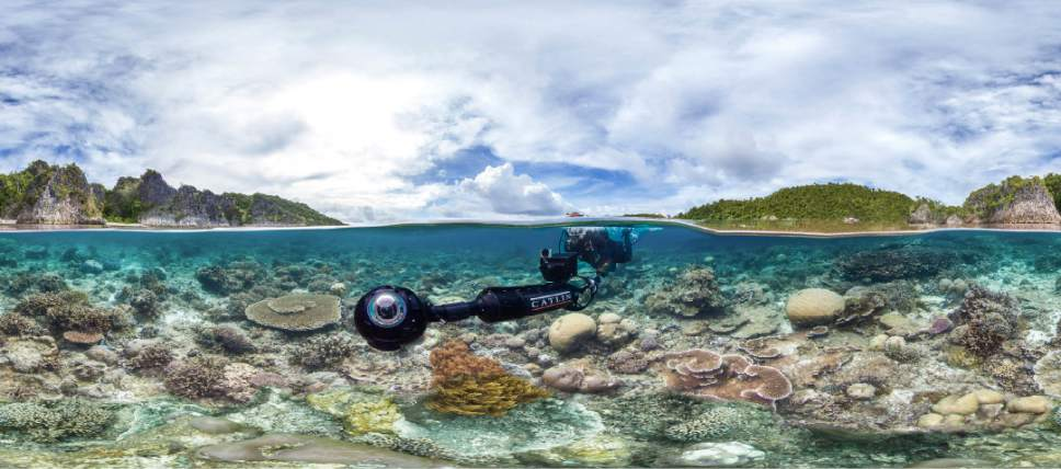 """Scientists explore endangered coral reefs in Jeff Orlowski's documentary """"Chasing Coral."""" The movie, part of the U.S. Documentary competition of the 2017 Sundance Film Festival, is being released Friday on Netflix. Courtesy Sundance Institute"""