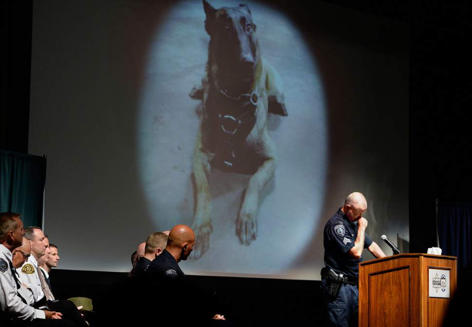 """Scott Sommerdorf      The Salt Lake Tribune   Sgt. Chad Reyes pauses to gather his thoughts as he speaks about his K-9 partner at the memorial service for """"Dingo,"""" a Unified Police Department dog shot and killed in the line of duty July 6 while working with his K-9 handler Sgt. Chad Reyes, Saturday, July 15, 2017."""