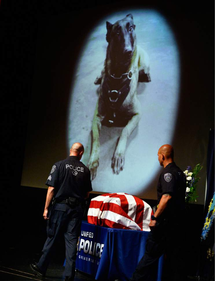 """Scott Sommerdorf      The Salt Lake Tribune   Sgt. Chad Reyes, left, looks over at his partner's casket as he takes the stage at the memorial service for """"Dingo,"""" a Unified Police Department dog shot and killed in the line of duty July 6 while working with his K-9 handler Sgt. Chad Reyes, Saturday, July 15, 2017."""