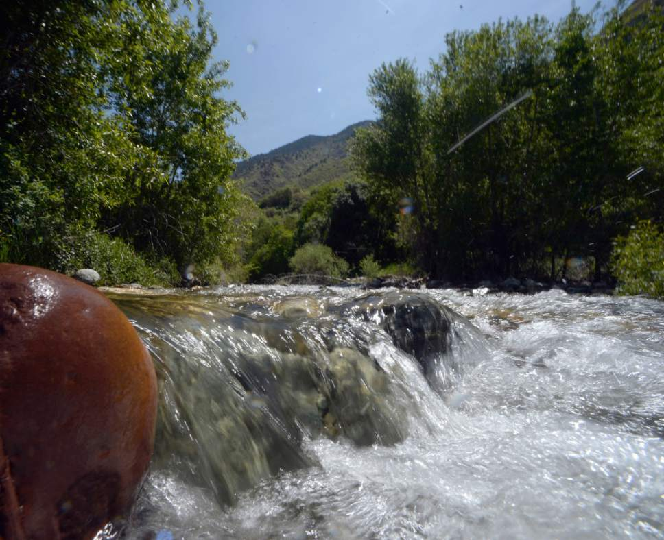 Al Hartmann | Tribune file photo Runoff from Big Cottonwood Canyon flows down Big Cottonwood Creek in May 2015. Utah Gov. Gary Herbert on Wednesday accepted a 50-year water management report from a team of advisors. The 106-page document emphasizes conservation, while also including mention of controversial water-development projects such as the Lake Powell pipeline and the Bear River project.