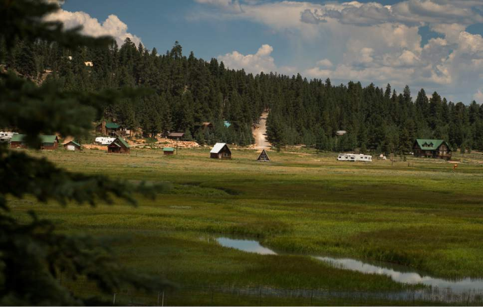 Leah Hogsten     The Salt Lake Tribune Duck Creek Village is located at the edge of a large mountain meadow in the Dixie Nation Forest, off of Scenic Hwy. 14. Visitors are just a few miles away from multiple outdoor activities at Duck Creek Pond, Aspen Mirror Lake  and Navajo Lake within Dixie National Forest.