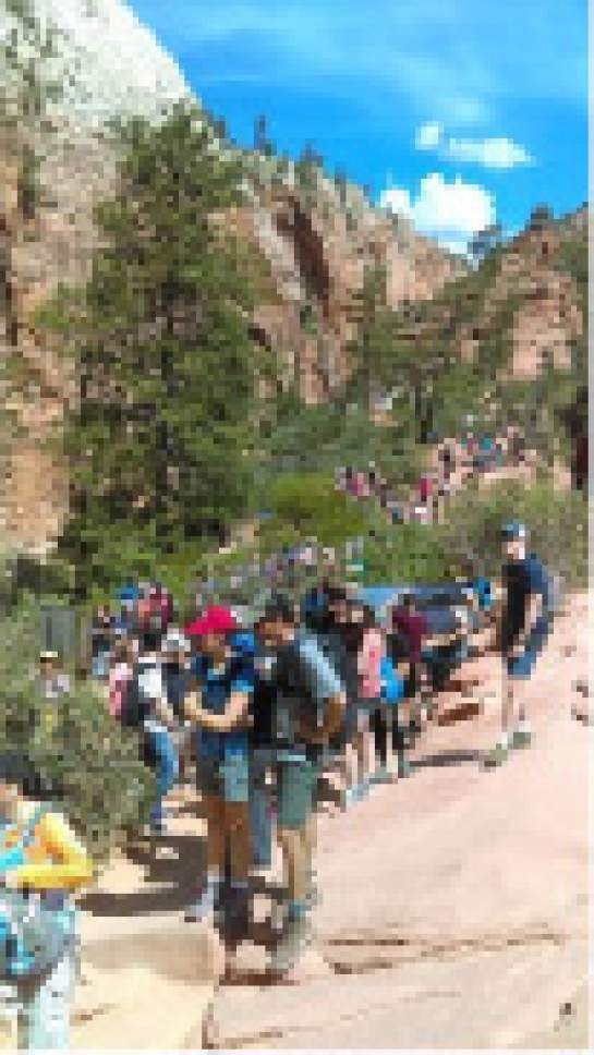 In this May 28, 2016 photo, provided by Zion National Park people line up at Angels Landing in Zion National Park, Utah. The sweeping red-rock vistas at Zion National Park are increasingly filled with a bumper crop of visitors, and now park managers are weighing an unusual step to stem the tide: : Requiring tourists to make RSVPs to get in.   (Zion National Park via AP)
