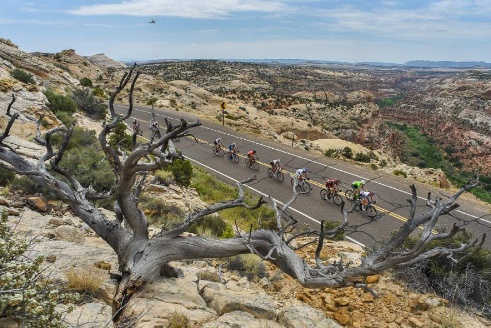 Francisco Kjolseth | The Salt Lake Tribune Cyclists race along the scenic Byway 12 above Calf Creek and the Grand Staircase-Escalante National Monument beyond on Tuesday, Aug. 2, 2016, as part of stage 2 of the Tour of Utah cycling race.