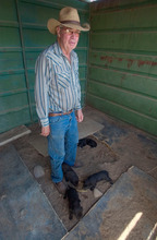 Waldo Wilcox stands with a litter of puppies at his Green River home July 29, 2004.   Wilcox and his family protected 1000s of Fremont Indian sites for more than 50 years on his family property in the Range Creek area of the Book Cliffs.   Griffin/photo
