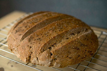 My favorite bread to bake is an artisan loaf made from a mix of hand-ground whole wheat and rye, then topped with caraway seeds. Courtesy MaryJane Butters