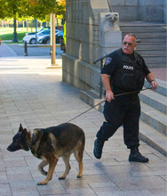 Al Hartmann  |  The Salt Lake Tribune