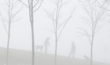Keith Johnson     The Salt Lake Tribune  A couple walk their dogs in the thick fog enveloping the area surrounding the Utah State Capitol on Sunday, December 5, 2010.