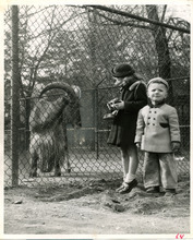 Eileen Sommer, age 4, and Stanley Sommer, age 2, at Liberty Park in 1951. Tribune file photo