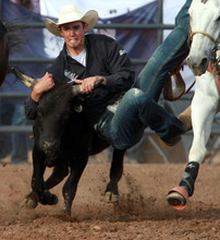 Rick Egan l The Salt Lake Tribune  Ryli Sutch, competes in the steer wrestling competition at the Utah High School Rodeo Championship round in Heber City, Saturday, June 10, 2011.
