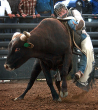 Rick Egan l The Salt Lake Tribune  Curtis Turner, Dixie, competes in the pole bending competition at the Utah High School Rodeo Championship round in Heber City, Saturday, June 10, 2011.