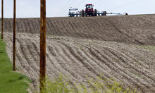 Associated Press file photo A farmer plants corn near Yutan, Neb. Farmers have planted the second-largest corn crop in nearly seven decades this spring. The huge crop could ease a grain shortage and keep food prices from rising over the next six months.