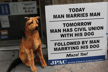 A stuffed dog sits next to a sign at a protest against gay marriage in front of New York Governor Andrew Cuomo's office in New York, Sunday, July 24, 2011. New York became the sixth and largest state to recognize same-sex weddings in a close state Senate vote on June 24 after strong lobbying by Cuomo and advocates. The first gay marriages in New York were performed just after midnight and continued through the day at municipal offices that opened for special weekend hours. (AP Photo/Seth Wenig)