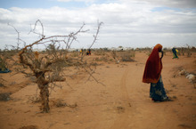 Somali women walk on the outskirt of UNHCR's Ifo Extention camp set outside  Dadaab, Eastern Kenya, 100 kms (60 miles) from the Somali border, Friday Aug. 5, 2011.  The camp, registering over 1,000 newcomers a day, has been set to provide better accommodation, sanitary conditions and security for Somali refugees. The drought and famine in the horn of Africa has  killed more than 29,000 children under the age of 5 in the last 90 days in southern Somalia alone, according to U.S. estimates. The U.N. says 640,000 Somali children are acutely malnourished, suggesting the death toll of small children will rise. (AP Photo/Jerome Delay)