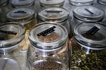 Djamila Grossman  |  The Salt Lake Tribune  Jars filled with seeds and nuts fill the kitchen shelves in the home of Christopher and Megan Stubb in Riverton. Megan has been eating raw for about eight years, Christopher for about five.