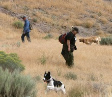 Steve Griffin  |  The Salt Lake Tribune Wally Hendricks and Jennifer Lopez work with their cadaver dogs as authorities continue to search for signs of Susan Powell in the area around Topaz Mountain in Juab County about 40 miles northwest of Delta on Wednesday.