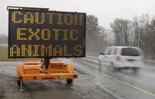 Tony Dejak  | The Associated Press A sign warning motorists that exotic animals are on the loose rests on I-70 Wednesday, Oct. 19, 2011, near Zanesville, Ohio. Police with assault rifles stalked a mountain lion, grizzly bear and monkey still on the loose after authorities said their owner apparently freed dozens of wild animals and then killed himself.
