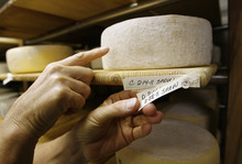 Scott Sommerdorf  |  The Salt Lake Tribune              Jennifer Hines points out one of the cheeses aging at Rockhill Cheese Creamery in Richmond on Thursday, Oct. 13, 2011. Rockhill is owned by Hines and her husband Pete Schropp. It's been honored  by the National Trust for Historic Preservation, and is one of only a few places in Utah to earn this prestigious award.
