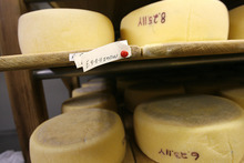Scott Sommerdorf  |  The Salt Lake Tribune              Cheeses aging at Rockhill Cheese Creamery in Richmond on Thursday, Oct. 13, 2011. Rockhill is owned by Jennifer Hines and Pete Schropp. It's been honored  by the National Trust for Historic Preservation, and is one of only a few places in Utah to earn this prestigious award.
