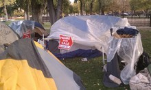 Erin Alberty | The Salt Lake Tribune Tents at Occupy SLC.
