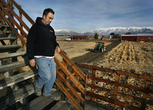 Scott Sommerdorf     The Salt Lake Tribune              Farm manager Brandon Law surveys fields from a bridge at Black Island Farms, a working vegetable farm along the wetlands in Syracuse that has a conservation easement to hold off encroaching development.